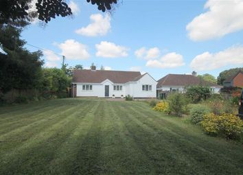 Thumbnail 4 bed detached bungalow for sale in Eastfield Road, Ross-On-Wye