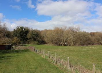 Thumbnail Land for sale in Bysing Wood Road, Faversham