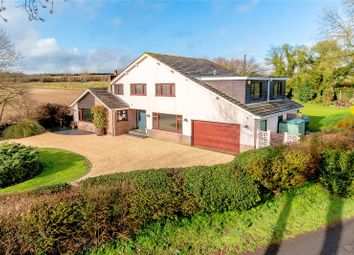 Thumbnail 5 bedroom detached house for sale in Common Road, Sixpenny Handley, Salisbury