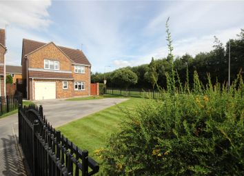Thumbnail 4 bed detached house for sale in Santolina Way, Hull