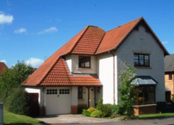Thumbnail 4 bed detached house to rent in Wellside Circle, Kingswells AB15,