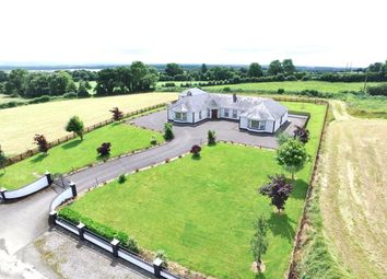 Thumbnail Bungalow for sale in Grove, Cloghan, Offaly