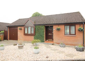 Thumbnail 3 bed bungalow for sale in Polmont House Gardens, Polmont