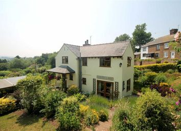 Thumbnail 3 bed cottage for sale in Phocle Green, Ross-On-Wye