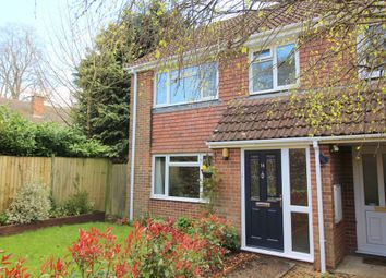 Thumbnail 3 bed semi-detached house for sale in De Lucy Avenue, Alresford
