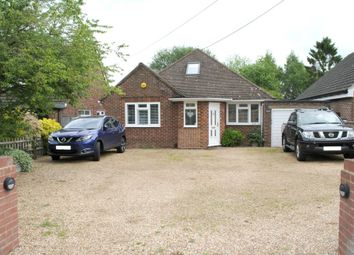 Thumbnail 4 bed detached bungalow to rent in White Lane, Ash Green, Aldershot