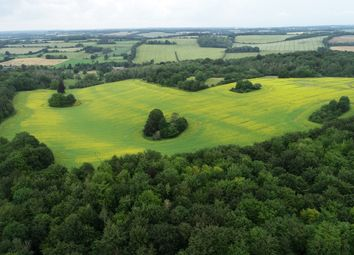 Thumbnail Land for sale in Coombe Lane, West Meon
