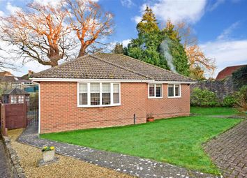 3 bed detached bungalow for sale in Gwydyr Close, Ryde, Isle Of Wight PO33