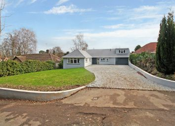 4 bed detached bungalow for sale in Whitehall Drive, Ifield, Crawley RH11