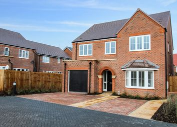 Thumbnail 4 bed detached house for sale in Last Plot Remaining, Potton, Sandy