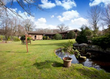 Thumbnail 5 bed detached bungalow for sale in Friday Street, Rusper, Horsham