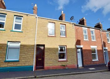 2 bed terraced house for sale in Hoopern Street, St Davids, Exeter, Devon EX4