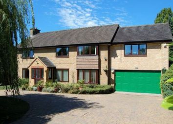 Thumbnail 5 bed detached house for sale in Thorburn Road, Weston Favell, Northampton
