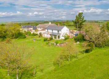 Thumbnail 3 bed detached house for sale in Black Dog, Crediton
