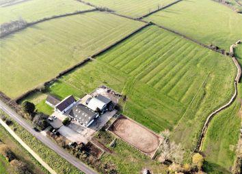 Thumbnail 5 bedroom property for sale in Lower Weare, Axbridge