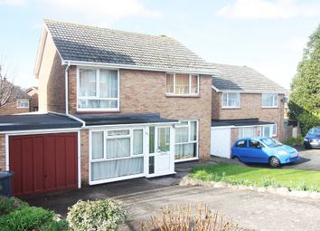 Thumbnail 4 bed detached house for sale in Roselands Drive, Paignton