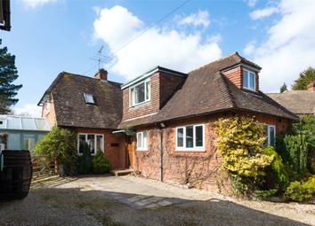 Thumbnail 3 bed detached bungalow to rent in The Paddock, Westcott, Dorking, Surrey