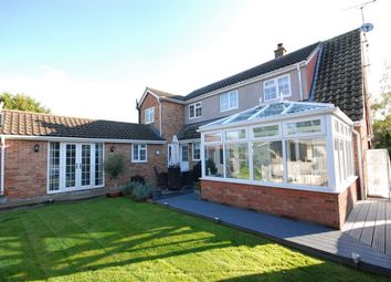 Thumbnail 4 bed property for sale in Collins Road, Little Maplestead, Essex