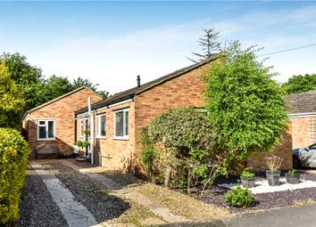 Thumbnail 3 bed bungalow for sale in Broomsquires Road, Bagshot, Surrey