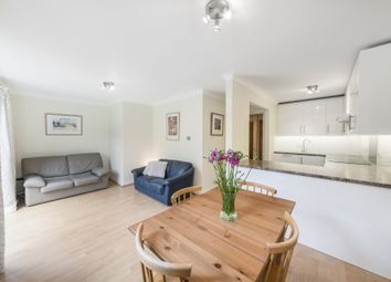 Thumbnail 2 bed flat to rent in Maltings Place, London