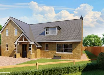 Thumbnail 4 bedroom detached house for sale in Park Lane, Kimpton, Hitchin, Hertfordshire