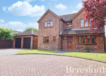 Thumbnail 4 bed detached house for sale in Narvik Close, Maldon