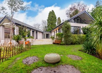 Thumbnail 4 bed detached house for sale in North Lodge Drive, Ascot, Berkshire