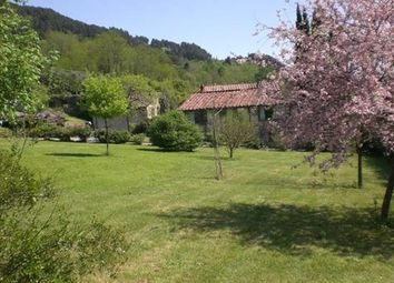 Thumbnail 3 bed farmhouse for sale in Lucca, Tuscany, Italy