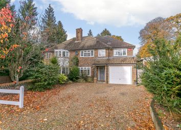 Thumbnail 4 bed semi-detached house for sale in Critchmere Hill, Haslemere, Surrey