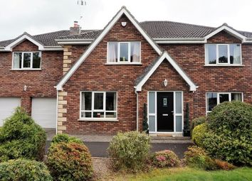 Thumbnail 6 bed detached house for sale in Millgrove Park, Derry/Londonderry, Eglinton.