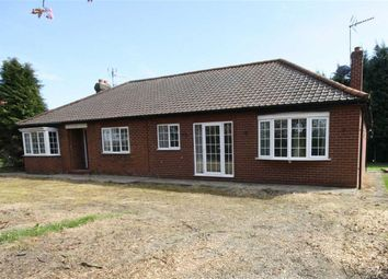 Thumbnail 2 bed bungalow to rent in Newfield Lane, South Cave