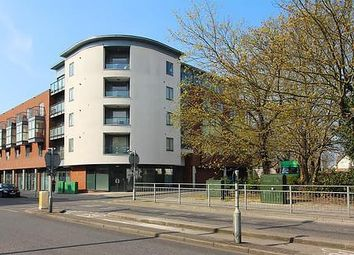 Thumbnail Flat to rent in Thompson Court, Broomfield Road, Chelmsford