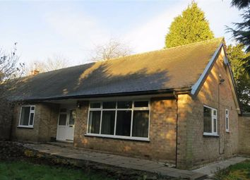 Thumbnail 4 bed semi-detached bungalow to rent in Plains Road, Mapperley, Nottingham