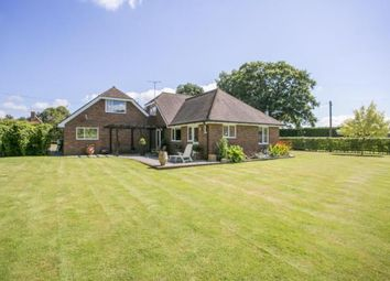 Thumbnail 4 bed bungalow for sale in Church Road, Herstmonceux, Hailsham, East Sussex