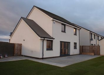Thumbnail 4 bed detached house to rent in Andrew Avenue, Braehead, Renfrew