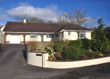 Thumbnail 3 bed detached bungalow for sale in Meshaw, South Molton