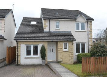 Thumbnail 4 bed detached house for sale in Meadow Court, Denny