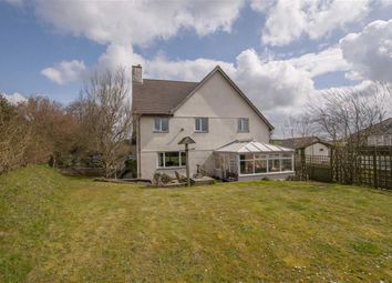Thumbnail 4 bed detached house for sale in Bridgerule, Holsworthy, Devon
