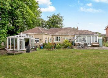 Thumbnail 3 bedroom detached bungalow for sale in Salisbury Road, Plaitford, Romsey