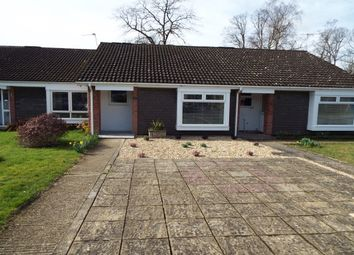 Thumbnail 2 bed bungalow to rent in St. Blaize Road, Romsey