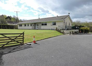 Thumbnail 5 bed detached bungalow for sale in Cribyn, Lampeter