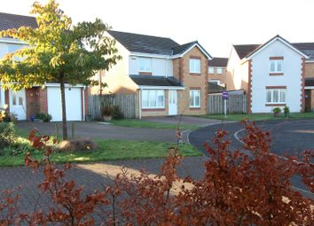 Thumbnail 4 bed detached house for sale in Balmore Crescent, Glasgow