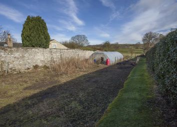 Thumbnail Land for sale in Cotherstone, Barnard Castle