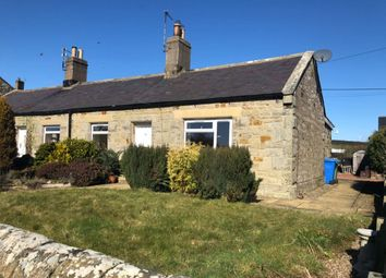 Thumbnail 2 bed semi-detached bungalow to rent in South Charlton, Alnwick, Northumberland