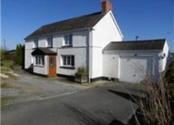 Thumbnail Land to rent in Llangynin, St Clears, Carmarthenshire