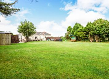 Thumbnail 4 bed detached bungalow for sale in Mithian Downs, St. Agnes