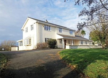 Thumbnail 5 bed detached house for sale in Llanddeusant, Holyhead, Anglesey