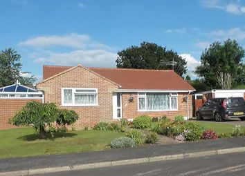Thumbnail 3 bed detached bungalow for sale in Middle Touches, Chard