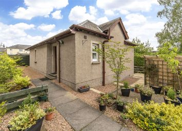 Thumbnail 3 bed bungalow for sale in Abbey Road, Scone, Perth