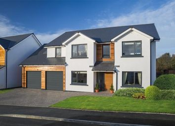 Thumbnail 5 bed detached house for sale in Cronk Cullyn, Colby, Isle Of Man